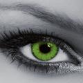 Тёмно-зелёный +13 600 тг