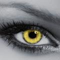 Жёлтый +13 600 тг